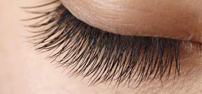what do eyelashes do